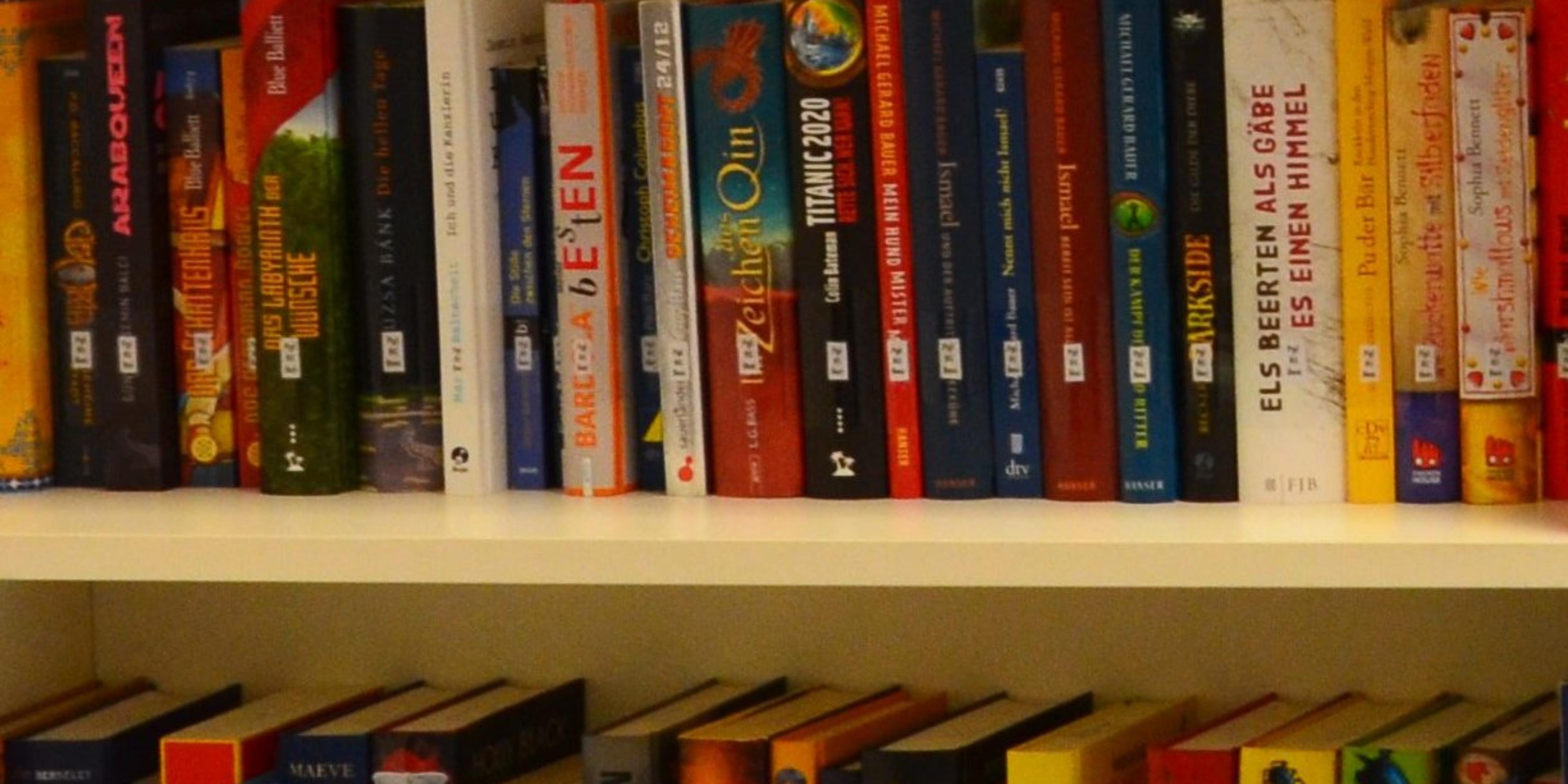 Bücher_1